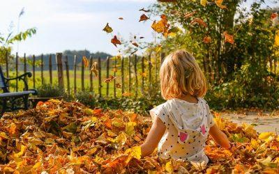 Podzimní fotografování – ZRUŠENO